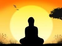 vipassana meditation workshop